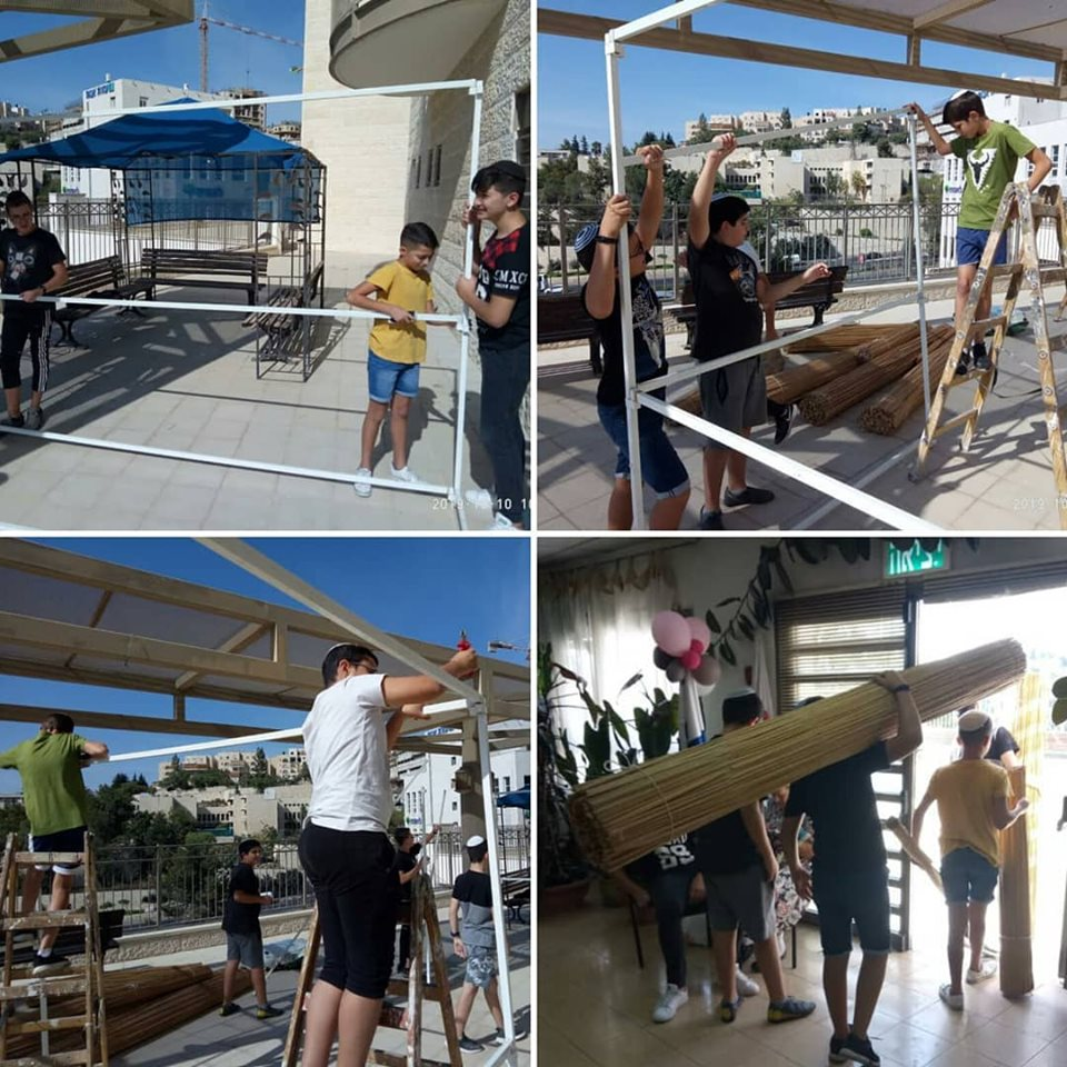 Boys from the Ramot school building sukkot for neighboring senior center